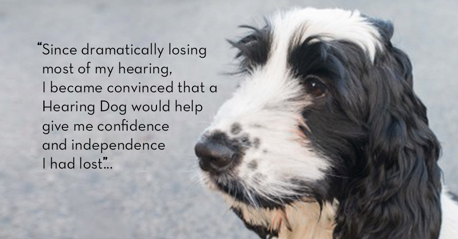 Not all Hearing Dogs are Labradors
