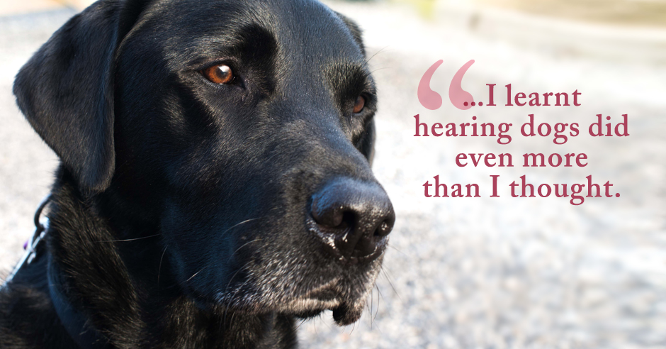 Sit. Wait. Off You Go. The Training Regime of a Hearing Dog.